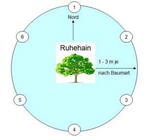 Die Lage der Bäume